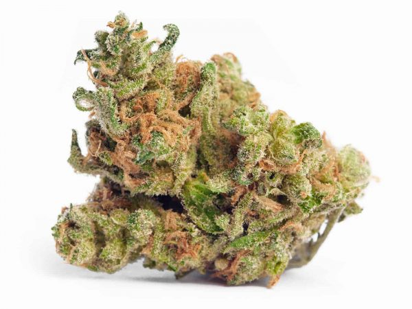Buy real weed online cheap order edibles online review Jack Herer