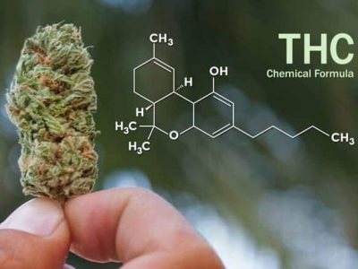 THC Weed