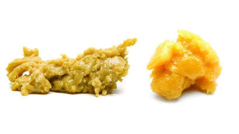 Cannabis Concentrates vs weed Extracts